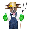 Farmer dog happy with thumb up holding a pitchfork Royalty Free Stock Photos