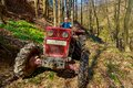 Farmer driving a old tractor in forest Royalty Free Stock Image