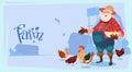 Farmer Feed Chicken Breeding Hen For Food Farm Royalty Free Stock Photo