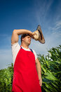 Farmer in field analysing green corn Royalty Free Stock Images