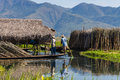 Farmer on floating garden inle lake in myanmar burmar farmers with mountain background Royalty Free Stock Images