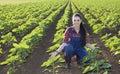 Farmer girl in sunflower field Royalty Free Stock Photo