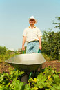 Farmer holding barrow Stock Image
