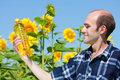 Farmer holding bottle of sunflowers oil Royalty Free Stock Photo