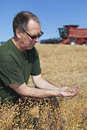 image photo : Farmer holding flax seeds