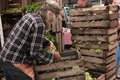 Farmer with lettuce in wooden crates new york city new york june this photo taken at a s market we see a unloading fresh from Stock Photo