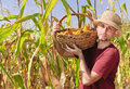 Farmer with maize in basket Stock Photography