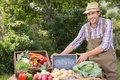 Farmer selling organic veg at market Royalty Free Stock Photo