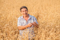 Farmer standing in a wheat field looking at the crop Royalty Free Stock Photography