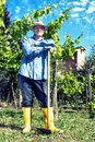 Farmer straw hat spade portrait break vineyard with and taking in Stock Image
