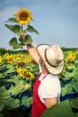 Farmer in sunflower field standing a Stock Photo