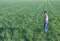 Farmer in wheat field Royalty Free Stock Photo