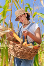 Farmer woman maize basket Royalty Free Stock Photo