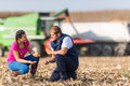 Farmers in corn fields during harvest Royalty Free Stock Photo
