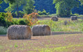 Farmers Hay Field Harvest Stock Photos