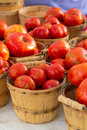 Farmers Market Royalty Free Stock Photography