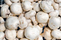 Farmers market champignon fresh mushrooms background on horizontal shot Stock Images