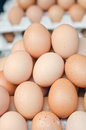 Farmers market eggs background of raw fresh for sale at a vertical shot Royalty Free Stock Image
