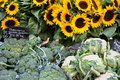 Farmers market in France vegetables and sunflowers. Royalty Free Stock Photo