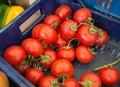 Farmers market fresh produce locally produced tomatoes real veg zero kilometres on stall Royalty Free Stock Photo