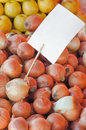 Farmers market onion pile of white with blank price tag on angled vertical shot Stock Images