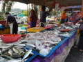 Farmers market at paroi jaya seremban negeri sembilan at malaysia a also is a physical retail featuring foods sold directly by to Stock Photos