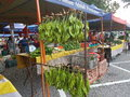 Farmers market at paroi jaya seremban negeri sembilan at malaysia a also is a physical retail featuring foods sold directly by to Royalty Free Stock Photo