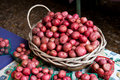 Farmers Market - Red potatoes Royalty Free Stock Photography