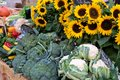 Farmers market stall in France with vegetables and sunflowers. Royalty Free Stock Photo