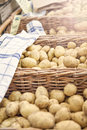 Farmers potatoes image of fresh at local market Royalty Free Stock Photography