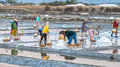Farmers pour salt in the salt pans Royalty Free Stock Photo