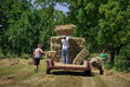 Farmers sons stacking hay bales a stack square in trailer Royalty Free Stock Photography