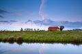 Farmhouse by canal in Dutch farmland Royalty Free Stock Photo