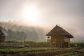 Farmhouse in morning the fog on a warm sunny Stock Image