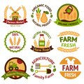 Farming harvesting and agriculture badges or labels set on white background isolated vector illustration Royalty Free Stock Photos