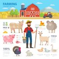 Farming infographic elements. Farmer, farm animals, equipment, barn, tractor, landscape large set of vector flat Royalty Free Stock Photo