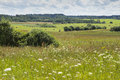 Farming land Royalty Free Stock Photo