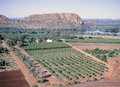Farming western australia scenes ord river and crops at kununurra in the kimberley region Royalty Free Stock Image