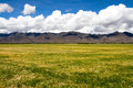 Farmland the beautiful view of tibet china Royalty Free Stock Photos