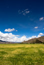 Farmland the beautiful view of tibet china Stock Image