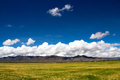 Farmland the beautiful view of tibet china Stock Images