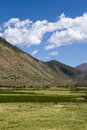 Farmland the of highland barley tibet china Royalty Free Stock Photos