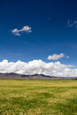 Farmland the of highland barley tibet china Stock Photography