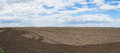 Farmland panorama of ready to be plowed in spring in vojvodina serbia Stock Photos