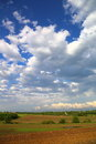 Farmland plowed with blue sky and puffy cumulus clouds Stock Photography