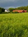 Farmland in Soft light. Royalty Free Stock Photo