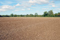 Farmland Soil Stock Photography