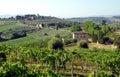 Farms in Tuscany, Italy Royalty Free Stock Photo
