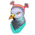 Fashion  bird animal illustration, anthropomorphic design, dove, hat, vector, illustration, hand drawing picture Royalty Free Stock Photo
