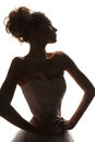 Fashion brides silhouette Royalty Free Stock Photography